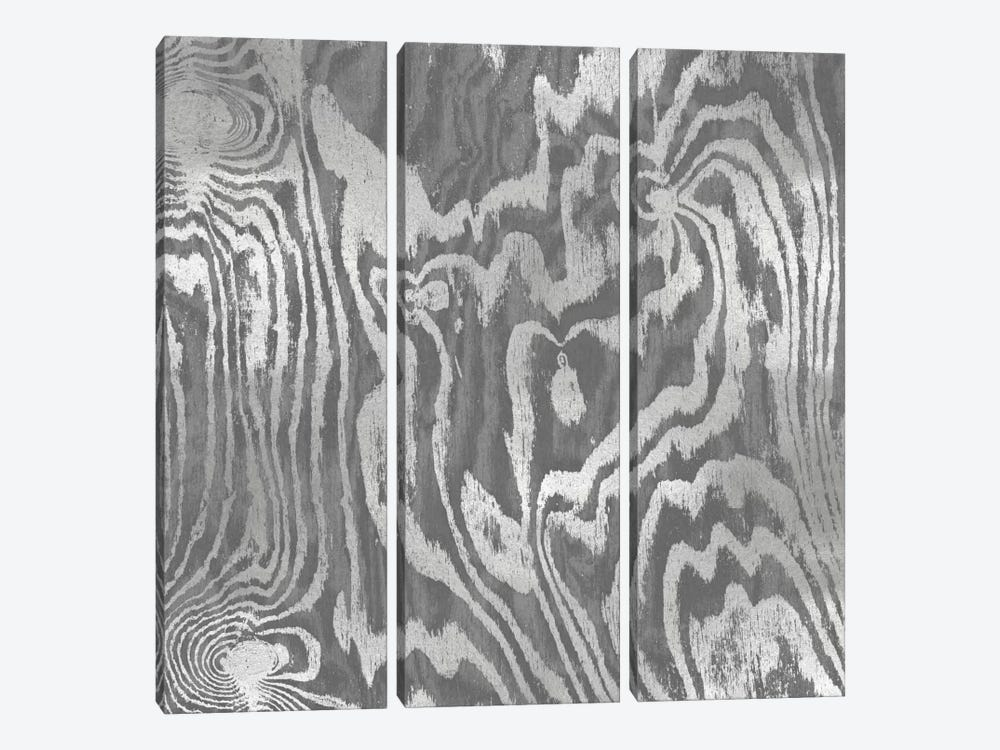 Silver Variations II by Danielle Carson 3-piece Canvas Print