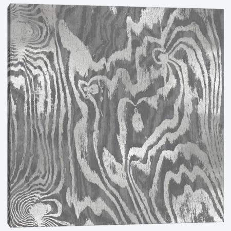 Silver Variations II Canvas Print #DAC77} by Danielle Carson Canvas Art Print