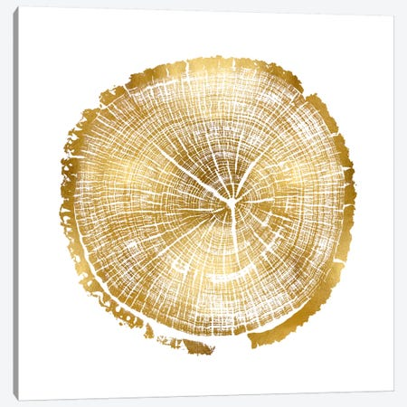 Timber Gold I Canvas Print #DAC78} by Danielle Carson Canvas Art