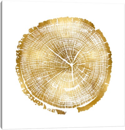 Timber Gold I Canvas Art Print