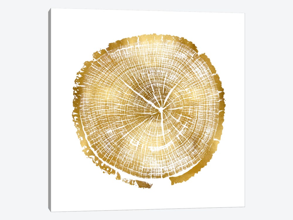 Timber Gold I by Danielle Carson 1-piece Canvas Artwork