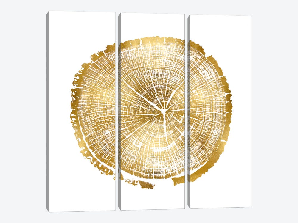 Timber Gold I by Danielle Carson 3-piece Canvas Wall Art