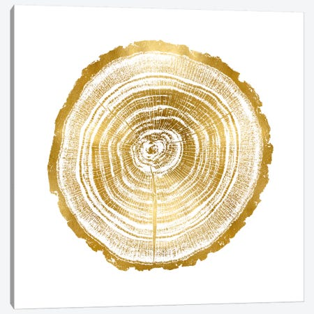 Timber Gold II Canvas Print #DAC79} by Danielle Carson Canvas Art