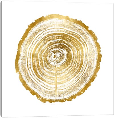 Timber Gold II Canvas Art Print