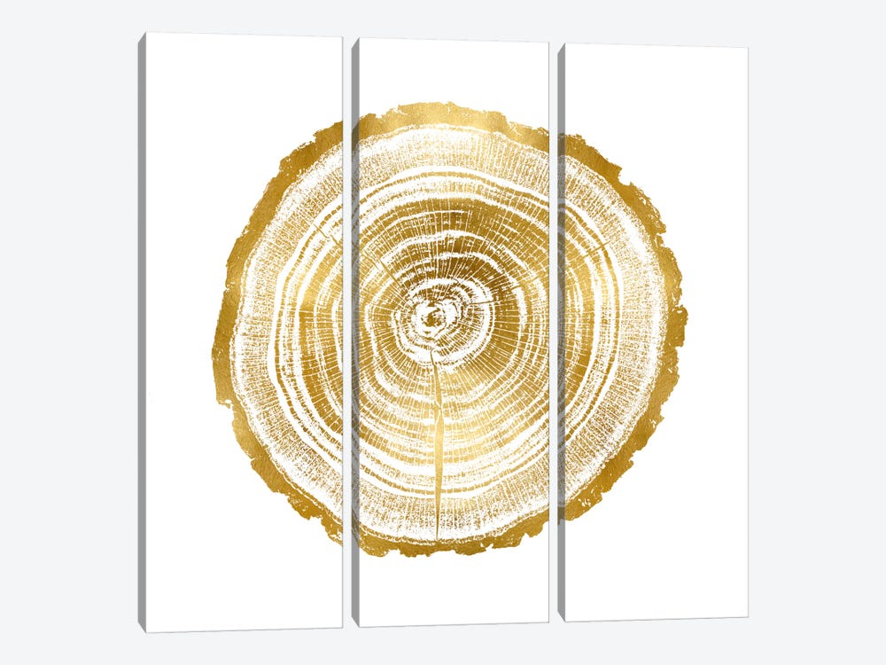 Timber Gold II by Danielle Carson 3-piece Canvas Print