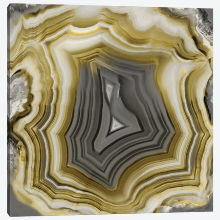 Agate In Gold & Grey Canvas Print #DAC7} by Danielle Carson Canvas Art Print