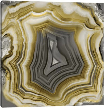 Agate In Gold & Grey Canvas Art Print