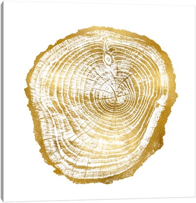 Timber Gold III Canvas Art Print
