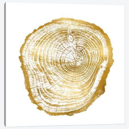 Timber Gold III Canvas Print #DAC80} by Danielle Carson Canvas Print