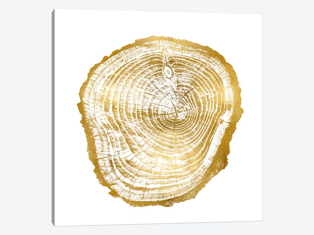 Timber Gold III by Danielle Carson 1-piece Canvas Art Print