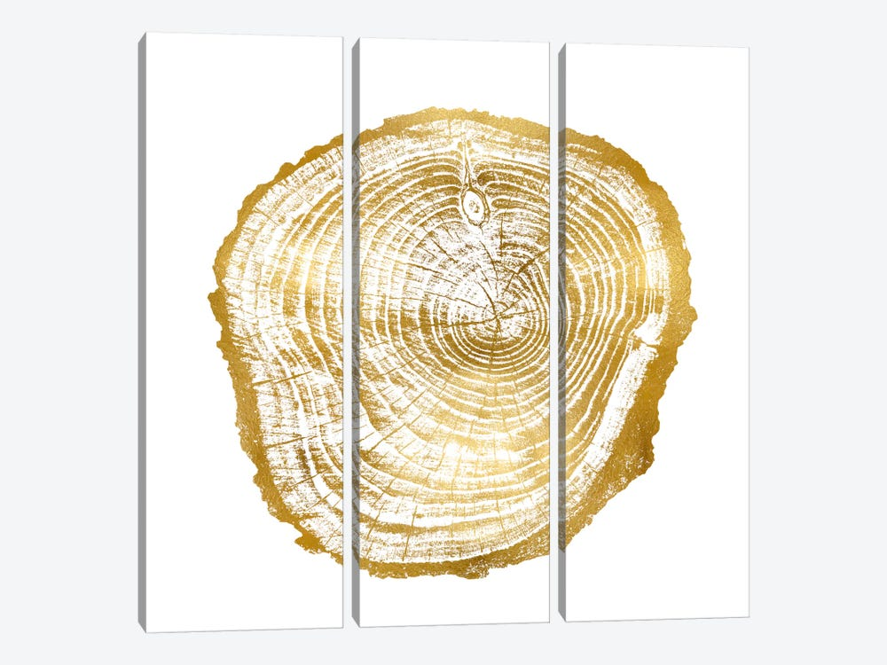 Timber Gold III by Danielle Carson 3-piece Canvas Art Print