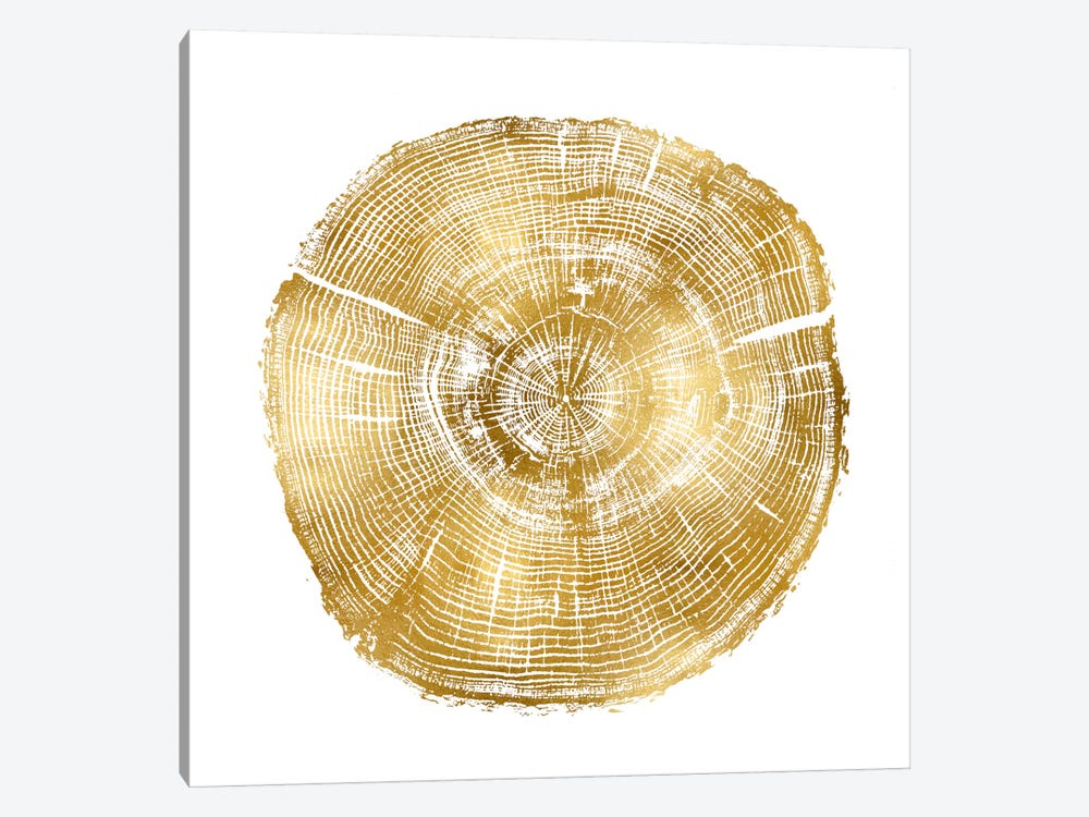 Timber Gold IV by Danielle Carson 1-piece Canvas Artwork