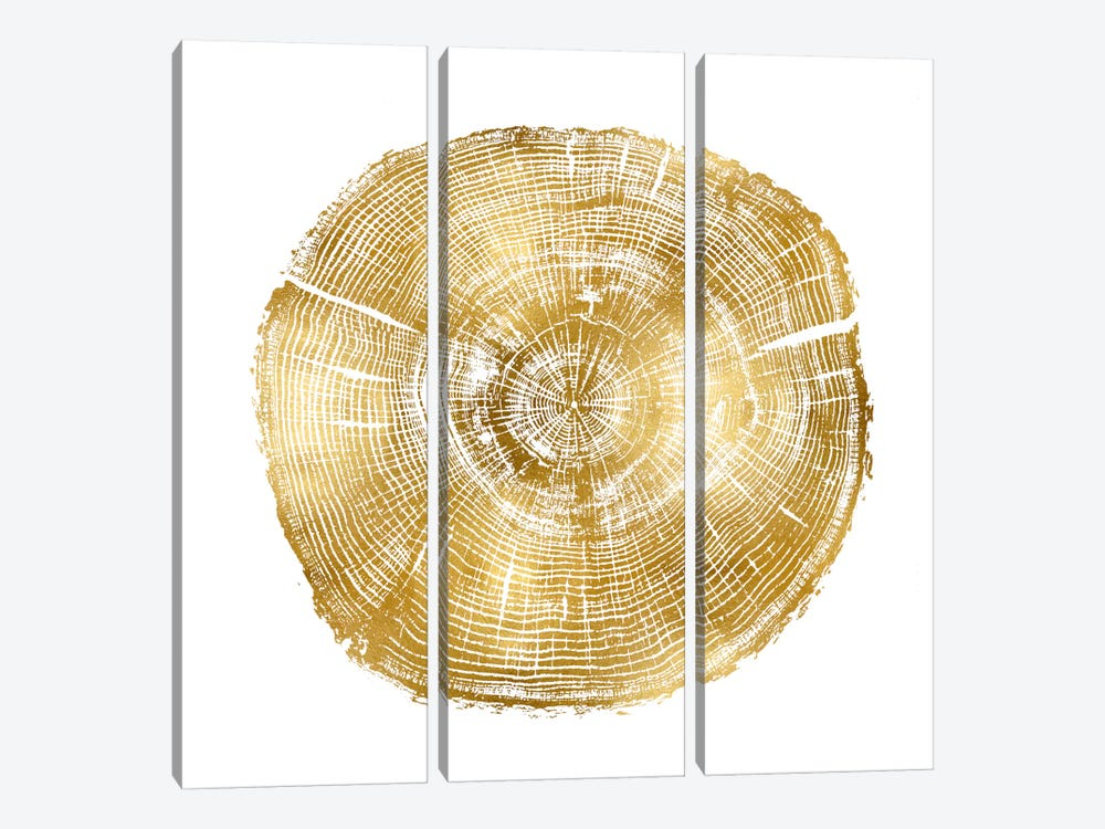 Timber Gold IV by Danielle Carson 3-piece Canvas Art