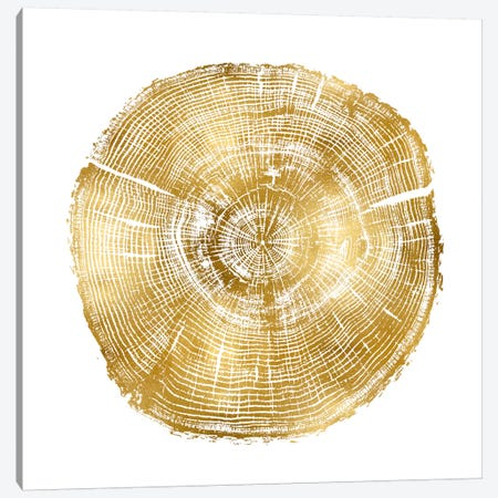 Timber Gold IV Canvas Print #DAC81} by Danielle Carson Canvas Art Print