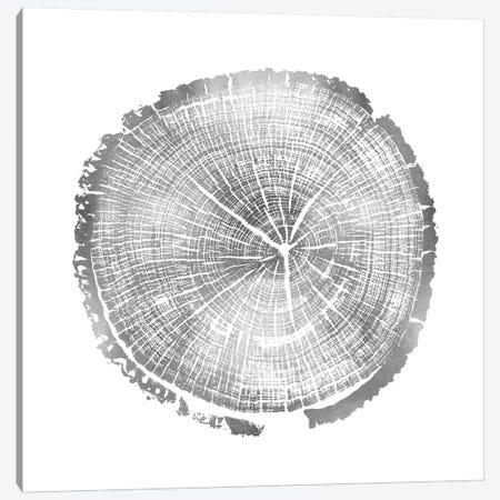 Timber Silver I Canvas Print #DAC82} by Danielle Carson Art Print