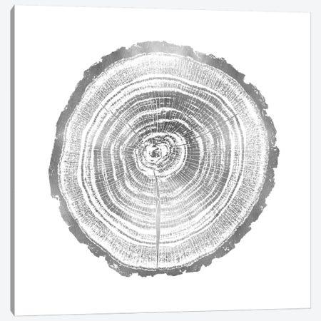Timber Silver II Canvas Print #DAC83} by Danielle Carson Art Print