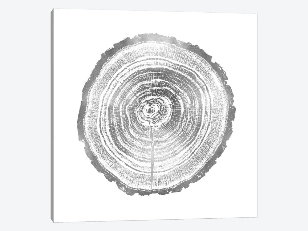 Timber Silver II by Danielle Carson 1-piece Canvas Art