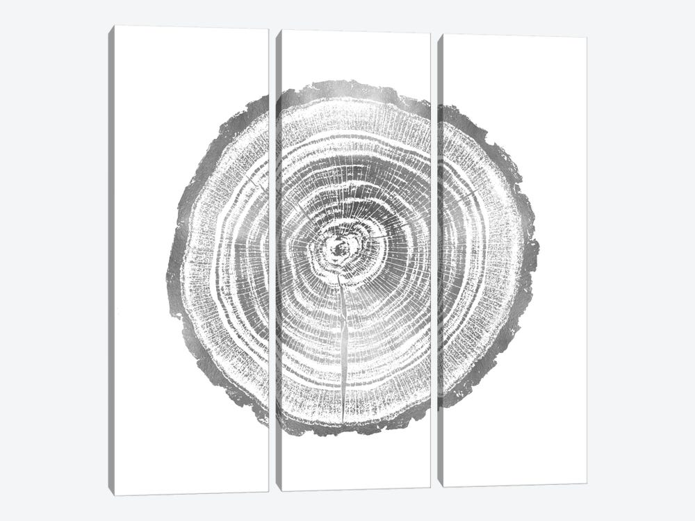 Timber Silver II by Danielle Carson 3-piece Canvas Wall Art
