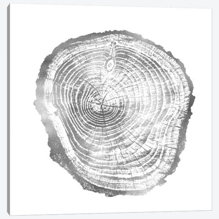 Timber Silver III Canvas Print #DAC84} by Danielle Carson Canvas Artwork