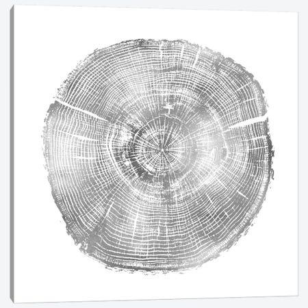 Timber Silver IV Canvas Print #DAC85} by Danielle Carson Canvas Art