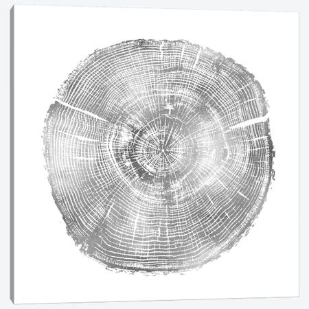 Timber Silver IV Canvas Print #DAC85} by Danielle Carson Canvas Art