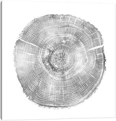 Timber Silver IV Canvas Art Print