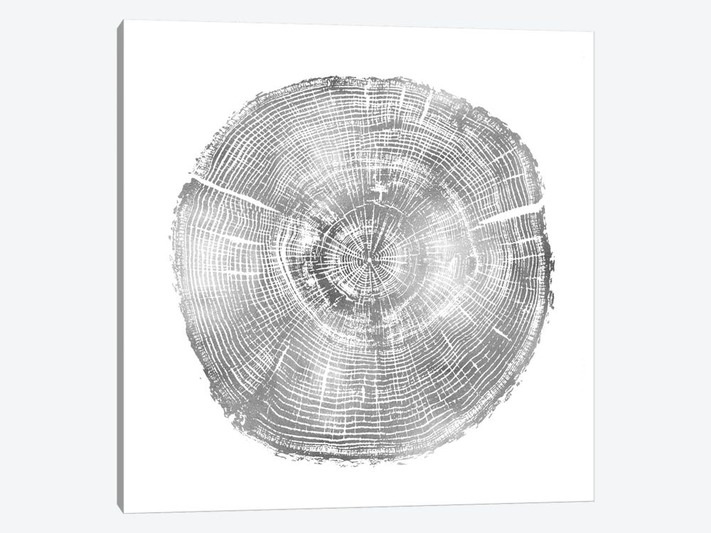 Timber Silver IV by Danielle Carson 1-piece Canvas Art