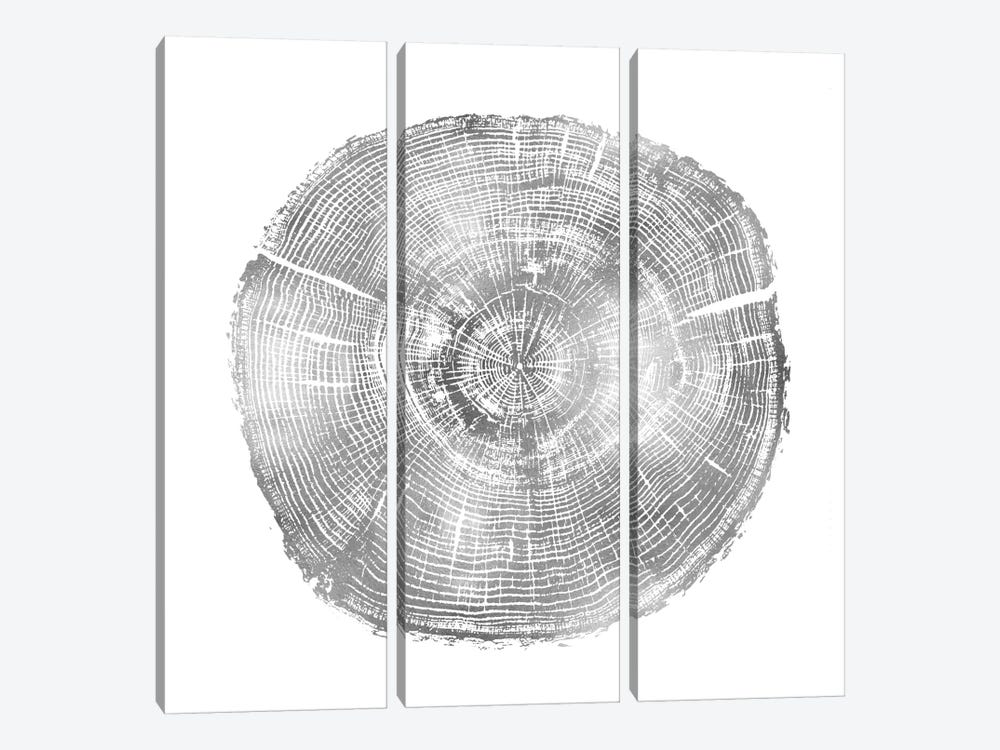 Timber Silver IV by Danielle Carson 3-piece Canvas Wall Art