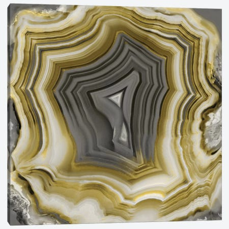 Agate In Gold & Grey II Canvas Print #DAC8} by Danielle Carson Canvas Wall Art