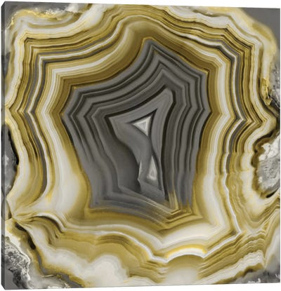Agate In Gold & Grey II Canvas Art Print