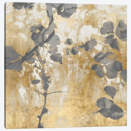 Nature's Way II Canvas Print #DAC92} by Danielle Carson Canvas Art