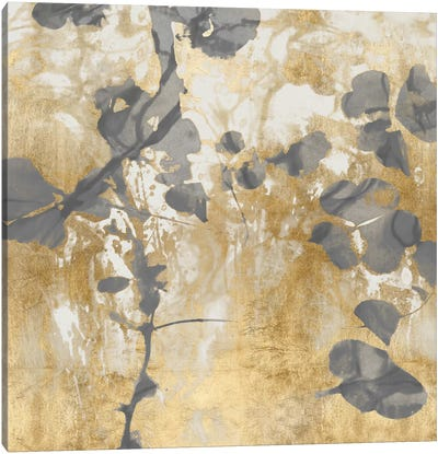Nature's Way II Canvas Art Print