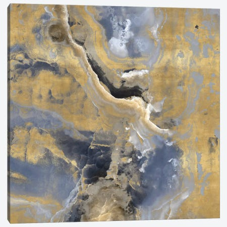 Stone With Gold And Gray I Canvas Print #DAC98} by Danielle Carson Canvas Artwork