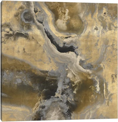 Stone With Gold And Gray II Canvas Art Print