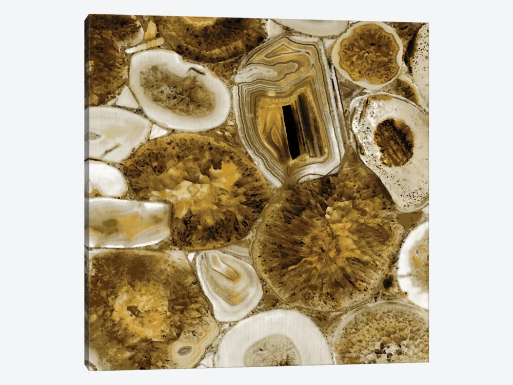 Agate In Gold I by Danielle Carson 1-piece Canvas Artwork