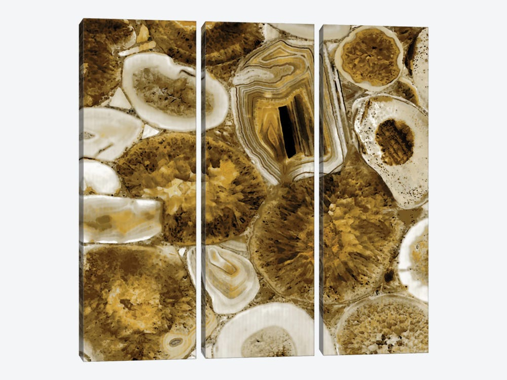 Agate In Gold I by Danielle Carson 3-piece Canvas Art
