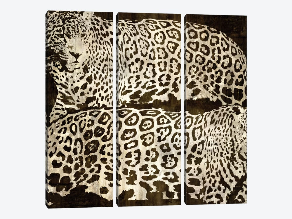 Leopards by Darren Davison 3-piece Canvas Artwork