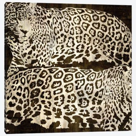 Leopards Canvas Print #DAD2} by Darren Davison Canvas Art Print