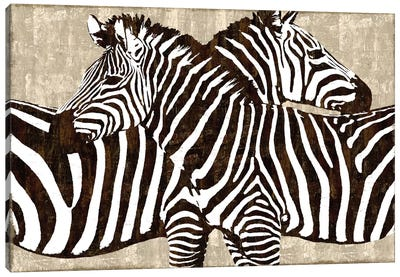 Zebra Gathering Canvas Art Print