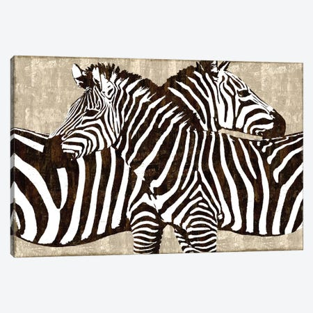 Zebra Gathering Canvas Print #DAD3} by Darren Davison Canvas Art Print