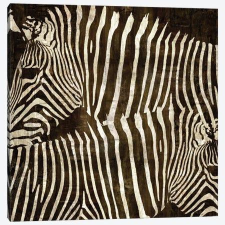 Zebras Canvas Print #DAD4} by Darren Davison Canvas Artwork