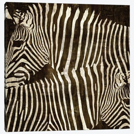 Zebras Canvas Print #DAD4} by Darren Davison Canvas Artwork