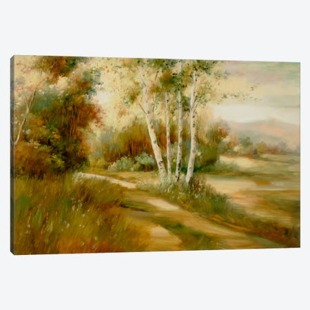 Eventide IX Canvas Print #DAG17} by DAG, Inc. Canvas Art Print
