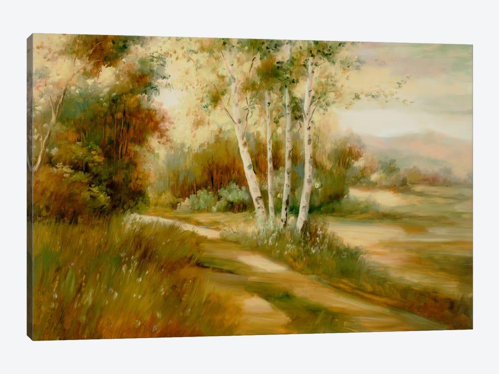 Eventide IX by DAG, Inc. 1-piece Canvas Artwork