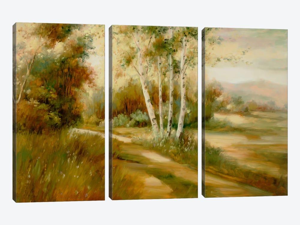 Eventide IX by DAG, Inc. 3-piece Canvas Artwork