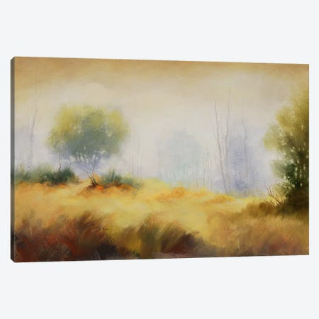 Hinterland X Canvas Print #DAG18} by DAG, Inc. Canvas Art
