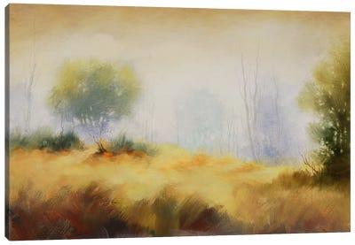 Hinterland X Canvas Print #DAG18
