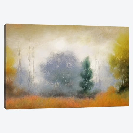 Hinterland XI Canvas Print #DAG19} by DAG, Inc. Canvas Art