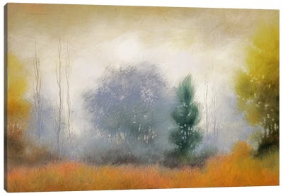 Hinterland XI Canvas Art Print