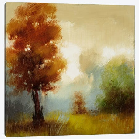 Hinterland XV Canvas Print #DAG21} by DAG, Inc. Canvas Print
